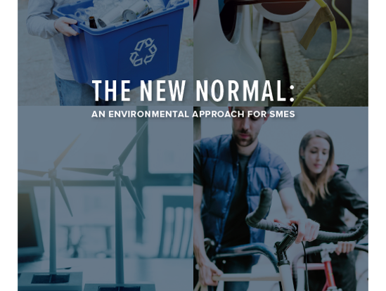 The New Normal - An environmental approach for SMEs